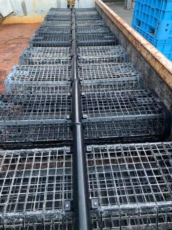 大入島オイスター/OONYUJIMA OYSTER育成用。日本初の牡蠣養殖システムが、いよいよ大入島上陸