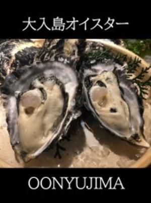 真牡蠣(大入島オイスターシングルシード)約1.5kg 30個程度入 生食用
