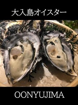 真牡蠣(大入島オイスターシングルシード)約900g 20個程度入 生食用