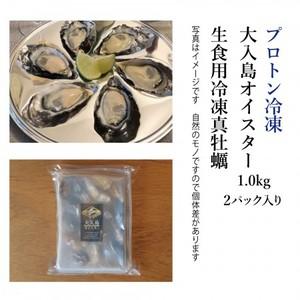 生でツルっと! プロトン凍結 大入島オイスター 生食用冷凍真牡蠣 (20個入×2パック)