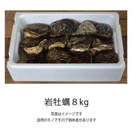 岩牡蠣 (佐伯産) 8kg