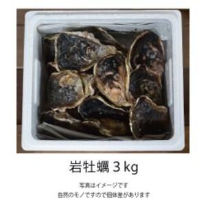 岩牡蠣 3kg