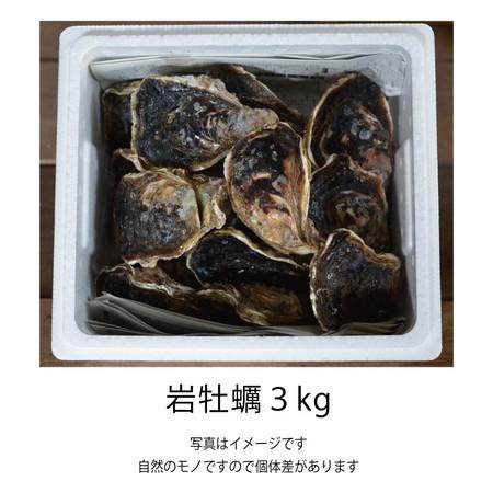 岩牡蠣 (佐伯産) 3kg
