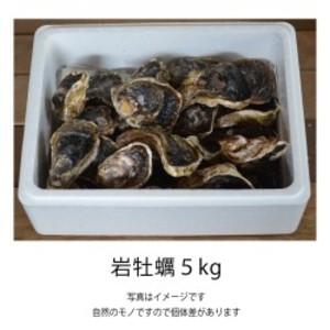 岩牡蠣 5kg
