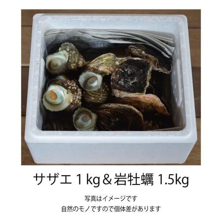 サザエ1kg & 岩牡蠣1.5kg セット