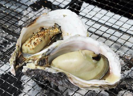岩牡蠣(佐伯市大入島産) 5kg
